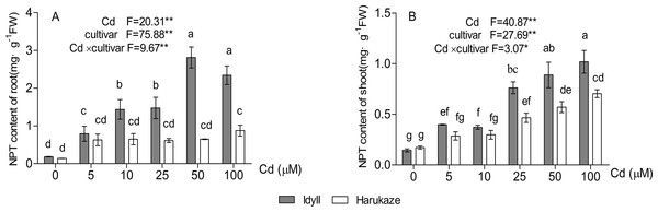 Effects of Cd on non-protein thiols (NPT) content in the roots and shoots of two Italian ryegrass cultivars.