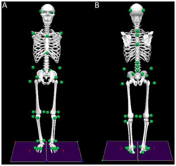 Front (A) and rear (B) views of the biomechanical model of the human body with the marker set convention (represented as green dots).
