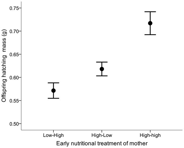 Offspring body mass (mean ± s.e.) from mothers which were raised under different early nutritional conditions as nestling and/or fledglings (LH, lower quality food as nestling-higher quality food as fledgling, HL, higher-lower, HH, higher-higher).