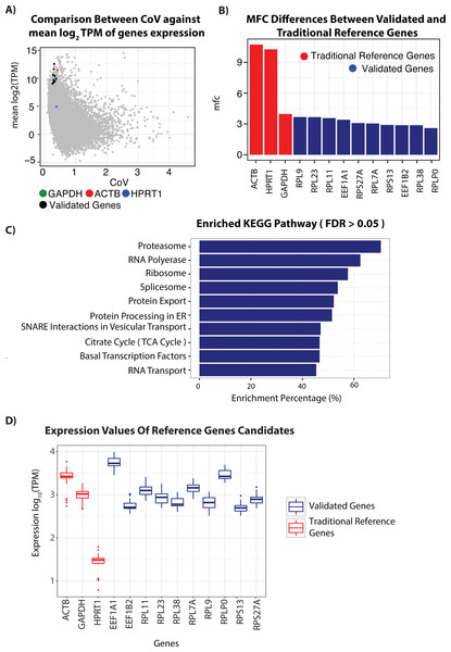 RNA-seq analysis of genes and candidate reference genes.
