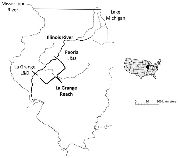Map of the study area, highlighting the La Grange Reach of the Illinois River.