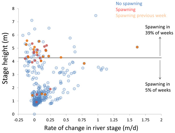 Hydrologic variables influencing bigheaded carp spawning across years.
