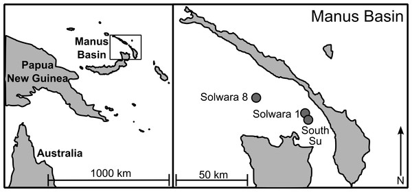 Sampling locations in Manus Lau Basin. Figure adapted from one originally published in Thaler et al. (2011).