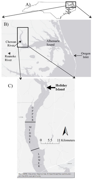 The overview of Albemarle Sound in North Carolina (A). The close up view of the location for two main tributaries (Chowan and Roanoke Rivers), and the Albemarle Sound in North Carolina (B). The three sections used to collect zooplankton on the Chowan River (C).