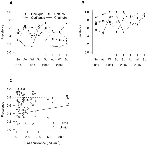 Patterns of parasite prevalence in population fractions composed by (A) small and (B) large hosts during 2014 and 2015.