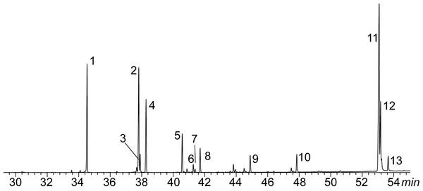 Example of a chromatogram of marine iguana (Amblyrhynchus cristatus; SRL population).