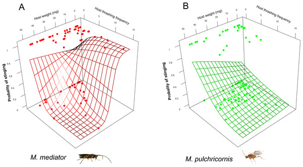 Probability of stinging as a function of both Mythimna separata larval body weight and thrashing frequency for Microplitis mediator (A) and Meteorus pulchricornis (B).