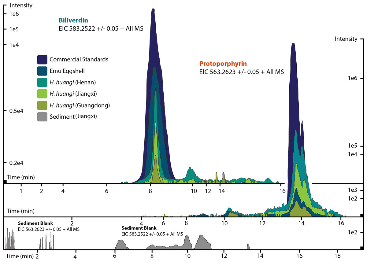 Dinosaur origin of egg color oviraptors laid blue green eggs peerj esi ms extracted ion chromatograms eics for mass 5832520 001 pooptronica