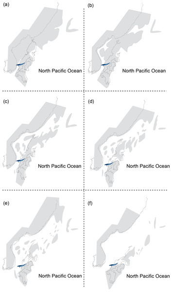 Reconstructing maps of Japan and surrounding areas during the Middle Miocene, particularly ranging from 17 to 15 Ma as this period corresponds to the geological age of HMN specimens and then indicates the change of geography over time: (A) 17 Ma; (B) 16.75 Ma; (C) 16.5 Ma; (D) 16.25 Ma; (E) 16 Ma; (F) 15 Ma.