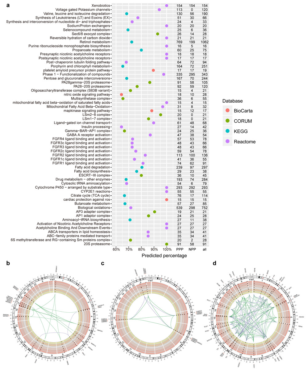 PrePhyloPro: phylogenetic profile-based prediction of whole proteome