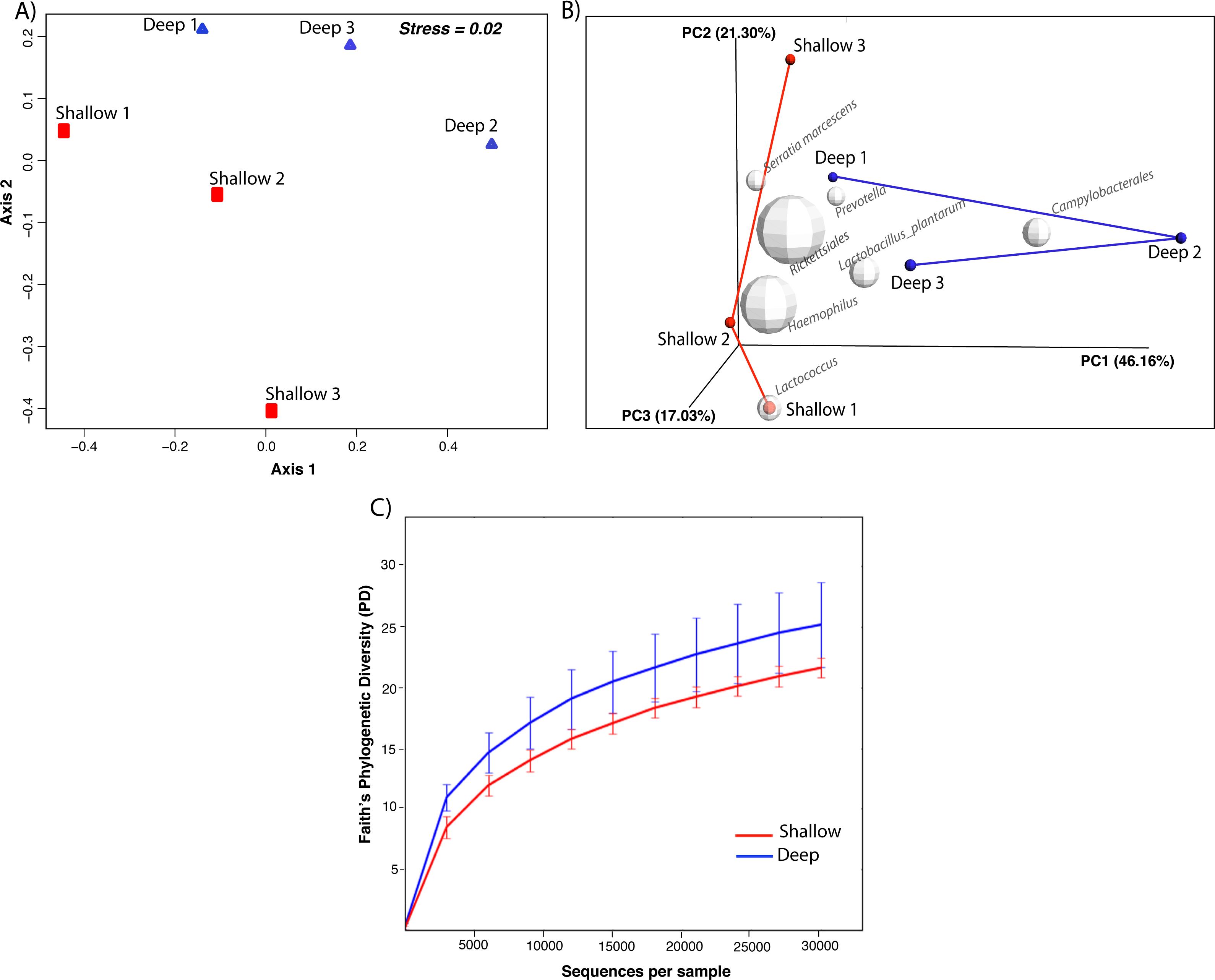 Different Taxonomic Profiles Drinking Water Shotgun Metahenomics