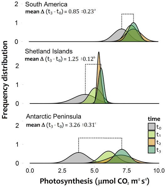 Frequency distribution of the photosynthetic response of Colobanthus quitensis individuals from three different origins (South America 53.5°S, Shetland Islands 62.1°S and Antarctic Peninsula 67.5°S).
