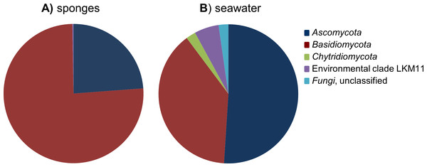 Relative abundance of fungal phyla found in the cumulative sponge and seawater samples.