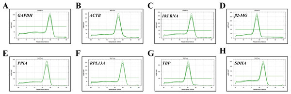 Specificity of RT-qPCR amplicons.