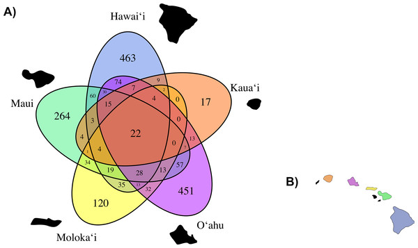 (A) A Venn Diagram displaying the number of overlapping fungal OTUs shared between Clermontia samples from each of the five main Hawaiian Islands, represented by a different color. The number of OTUs unique to each island lie on the outermost portion of each ellipse. (B) The geographic layout of the main Hawaiian Islands.