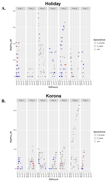 Linkage group relative chromosome positions on the Fragaria vesca reference genome.