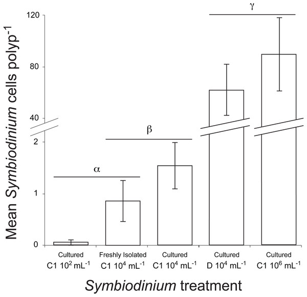 Mean number of Symbiodinium cells per polyp at 48 h post inoculation in juvenile recruits of the coral A. millepora inoculated with one of five treatments: laboratory-cultured C1 Symbiodinium at 102, 104 or 106 algal cells ml−1; or freshly-isolated C1 Symbiodinium at 104 cells ml−1; or laboratory-cultured clade D Symbiodinium at 104 cells ml−1.