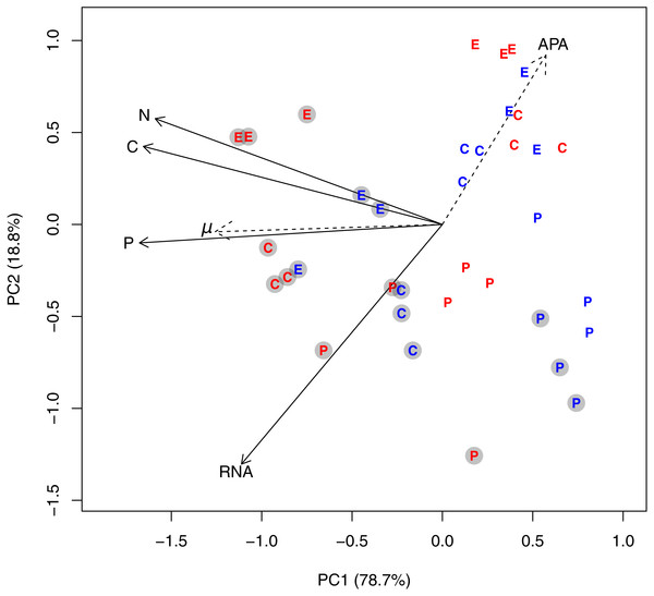 PCA plot based on log-transformed and standardized cell volume-specific concentrations of C, N, P, and RNA in the 36 experimental units.