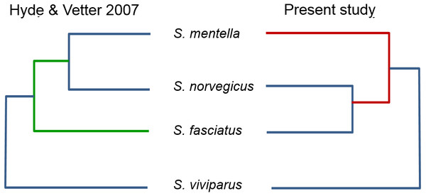 Proposed North Atlantic Sebastes phylogenies of Hyde & Vetter (2007) compared to the present study.
