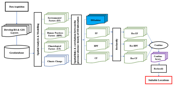 Schematic of the process that can be used to model the suitable location for Dubas bug infestations.