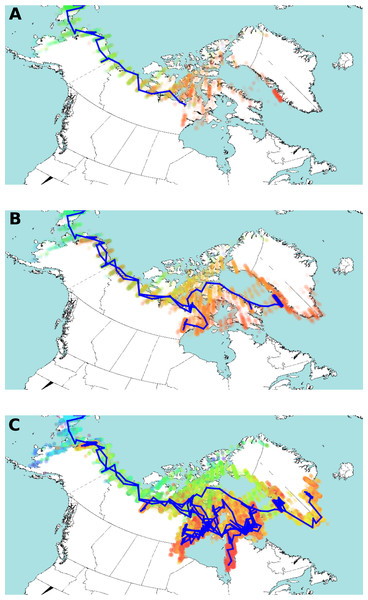 Estimated HBV dispersal routes into the high eastern Arctic, shown as a progression through time at times 900 YBP (A), 600 YBP (B) and present (C).