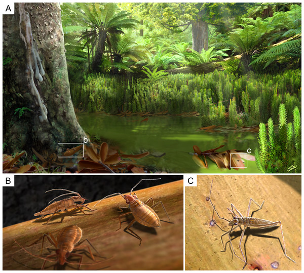 Palaeoecological reconstruction of Glaesivelia pulcherrima gen. et sp. n. and Iberovelia quisquilia gen. et sp. n.