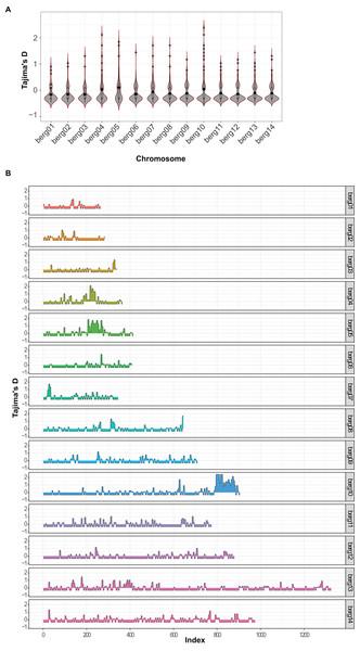 Genome-wide distribution of Tajima's D scores in P. berghei.