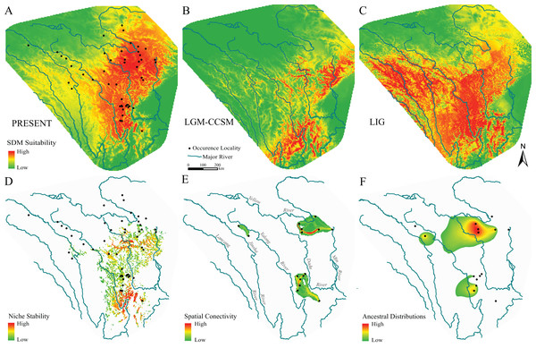 Species distribution models, hypotheses of habitats stability and spatial genetic patterns of Nanorana pleskei.