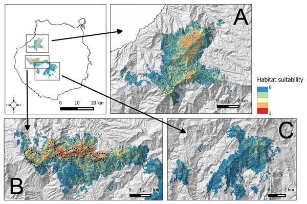 Habitat suitability map for the successful breeding of the blue chaffinch in four pine forests of Gran Canaria island located within the altitudinal range of Inagua.