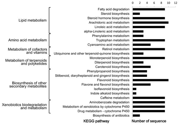KEGG pathway analysis of predicted CYP450s in L. japonica.