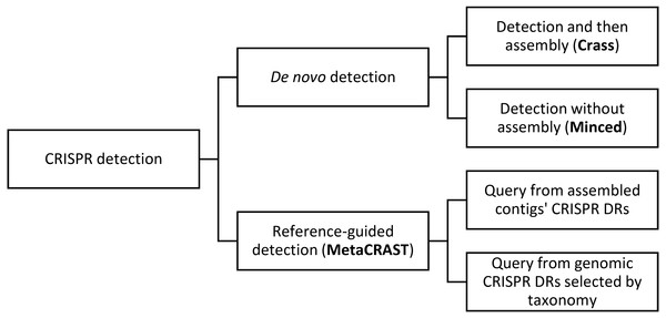 This diagram outlines relationships amongst different metagenomic CRISPR detection methods.