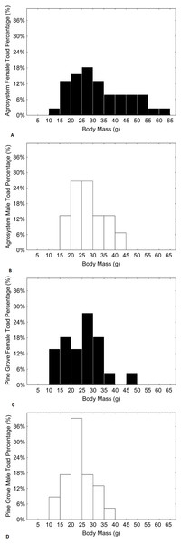 Histograms showing the distributions of percentages of male and female toad body mass in agrosystem ((A) for females and (B) for males) and pine grove ((C) for females and (D) for males).