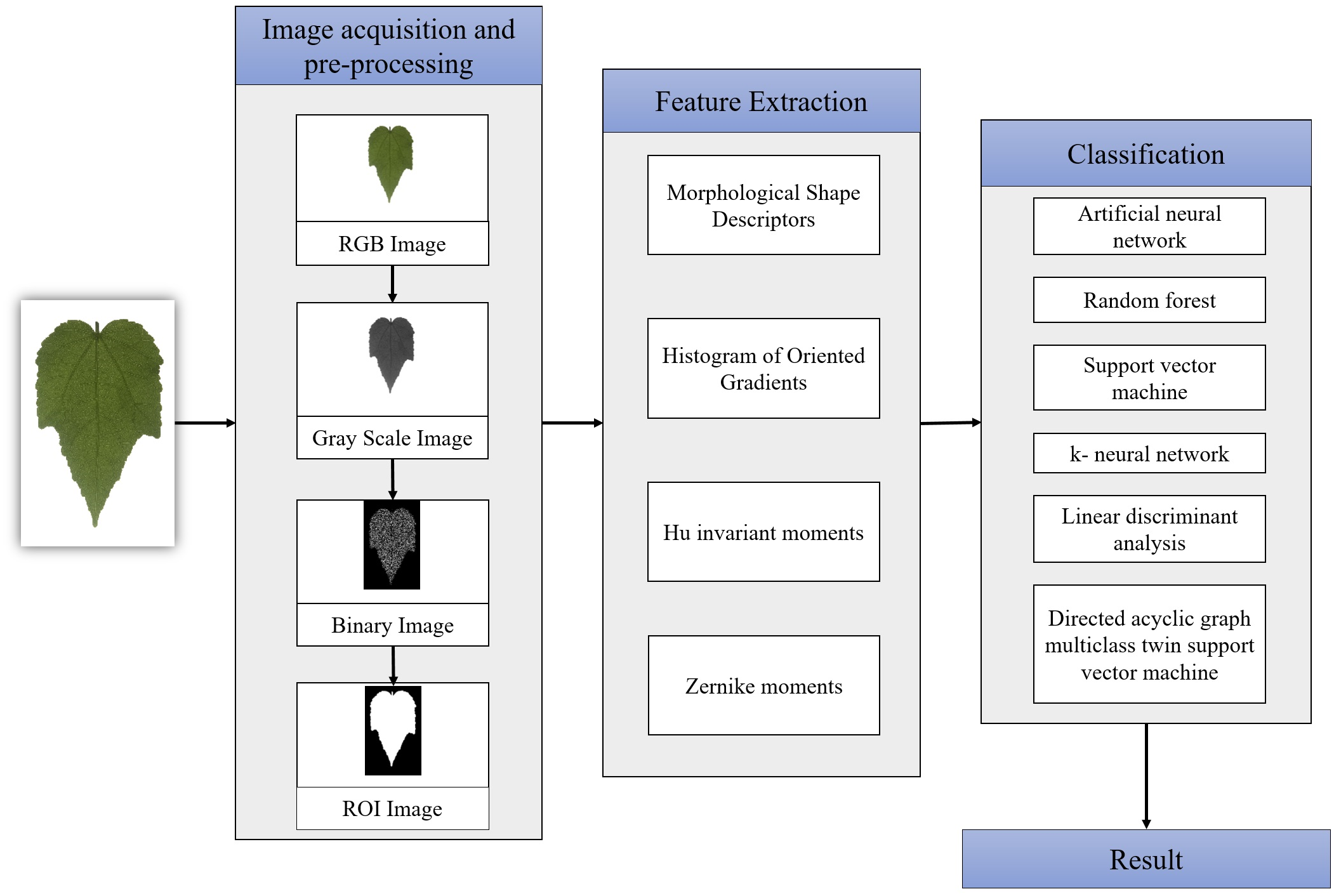 Automated classification of tropical shrub species: a hybrid