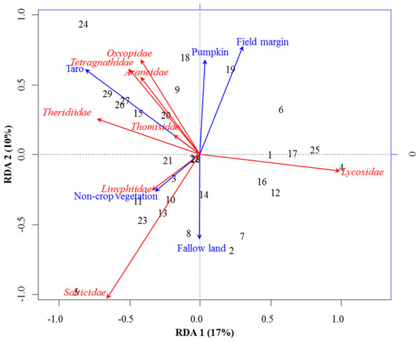 RDA Triplot (RDA on a covariance matrix) of the spatial correlation between Hellinger transformed abundance of spider families and vegetation types surrounding the brassica field using PCNM as distance matrix.