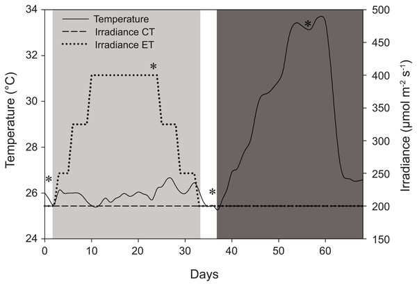Schematic representation of the experimental design displaying variations in light and temperature over the 68-day interval.