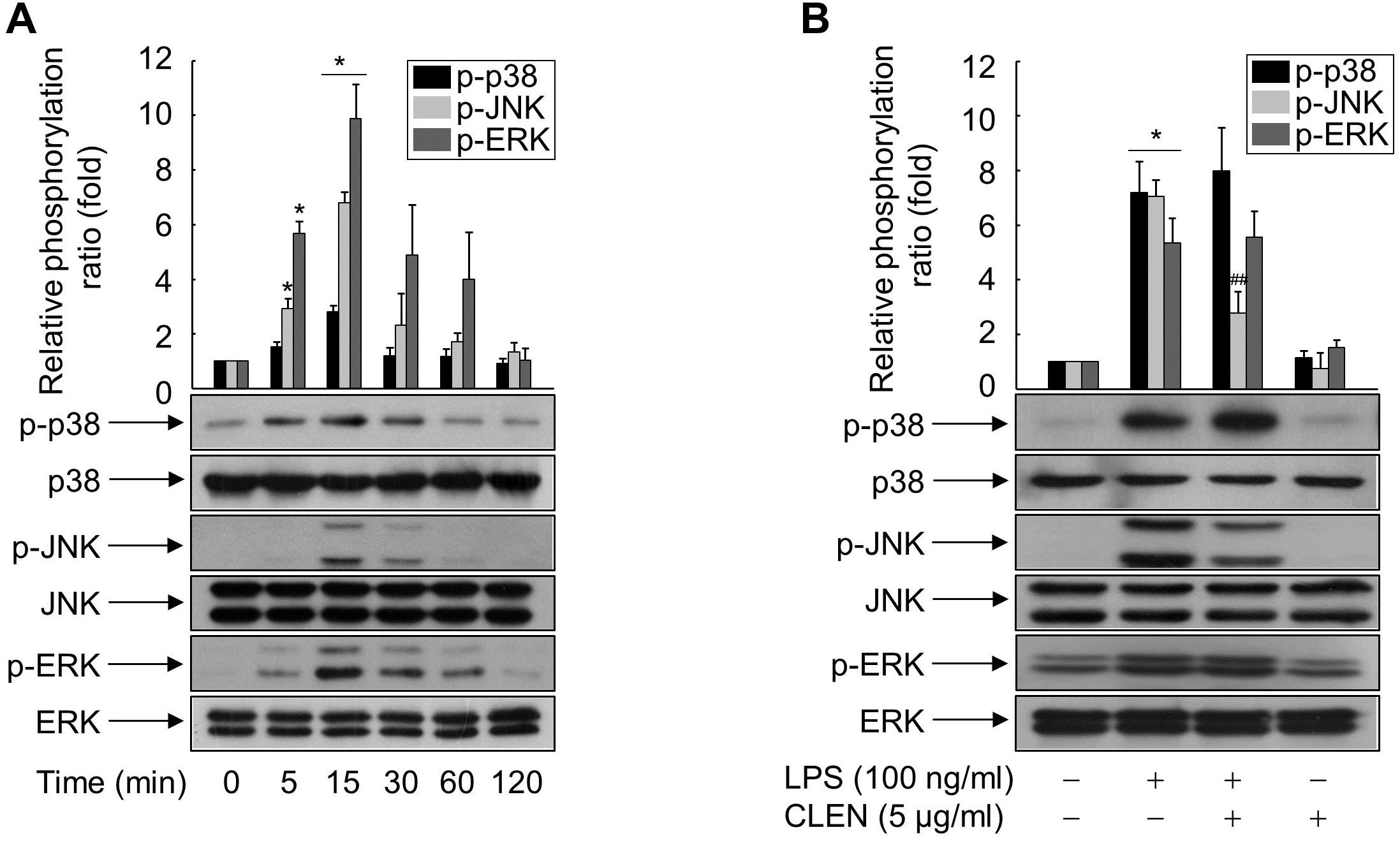 Curcumin longa extract-loaded nanoemulsion improves the