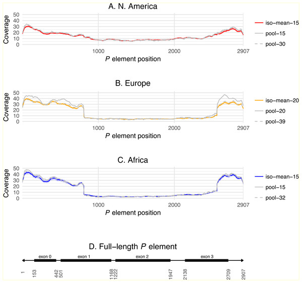 P element coverage profiles for isofemale lines and pool-seq samples from three worldwide populations of D. melanogaster.