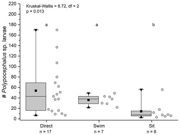 Infection intensity of Lepidopa benedicti individuals showing different behaviours.