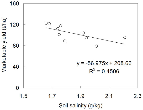 The relationship between soil salinity and marketable tomato yield.