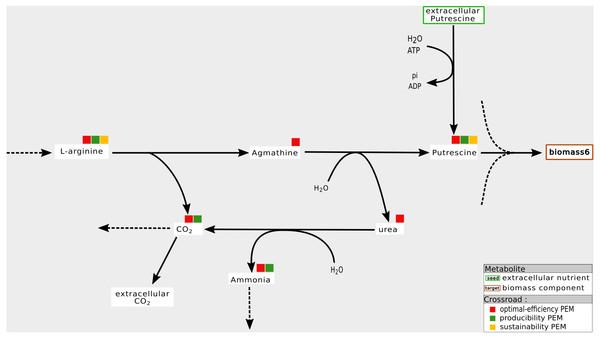Optimal choice of pathways: example of an optimal-efficiency-PEM that is neither a sustainability nor a producibility-PEM.