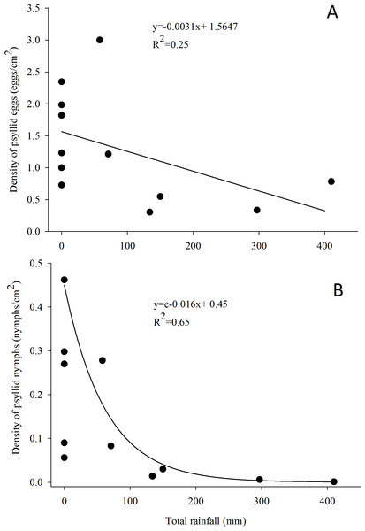 Relationship between the density of G. brimblecombei eggs (A) and nymphs (B) on E. camaldulensis and monthly total rainfall (n = 12).