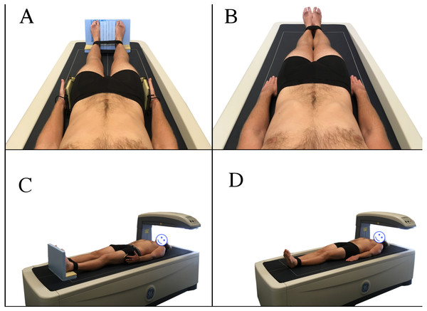 Nana positioning protocol (A, C) and NHANES positioning protocol (B, D).