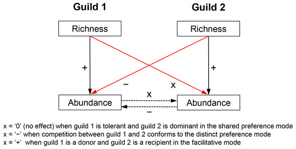 Hypothesized relationships of guild richness and abundance in guilds involved in competitive vs. facilitative interactions.