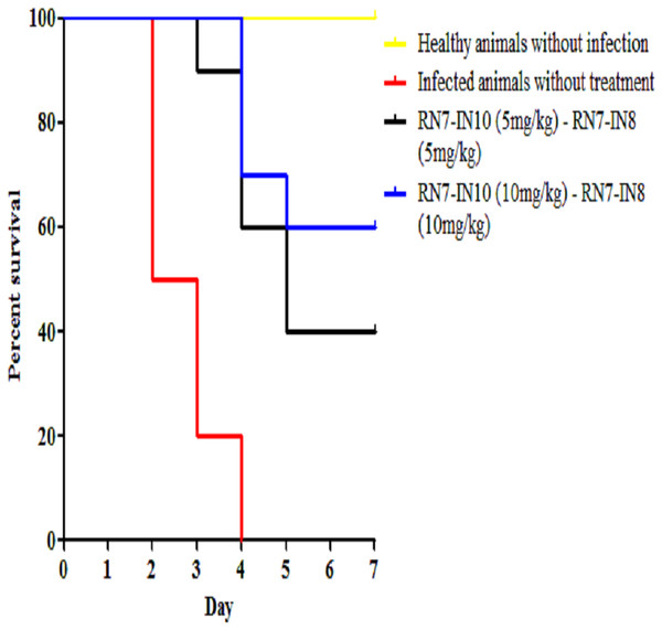 Survival curve of infected mice treated with combinations of RN7-IN10 and RN7-IN8.