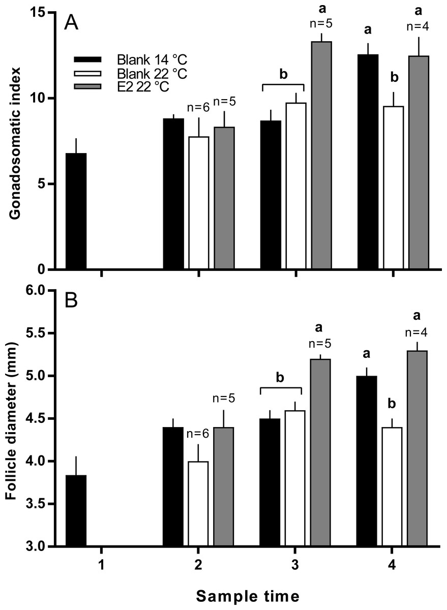an overview of the low temperature effects on minnows and juvenile atlantic salmon