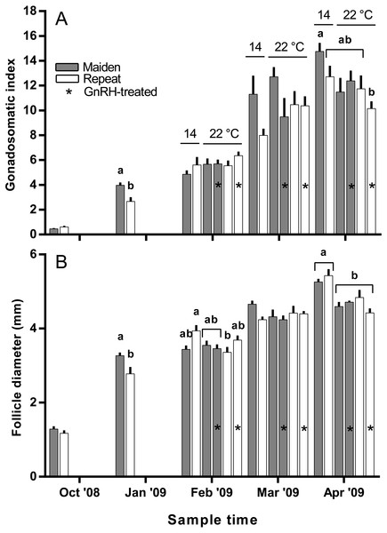 Mean + SEM (n=6–7) gonadosomatic index (A) and follicle diameter (B) of maiden and repeat spawners.