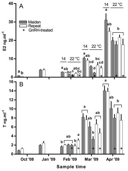 Mean + SEM (n=6–7) plasma estradiol (A) and testosterone (B) levels of maiden and repeat spawners.