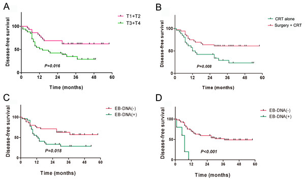 Kaplan–Meier analysis of disease-free survival among patients with residual or recurrent nasopharyngeal carcinoma.