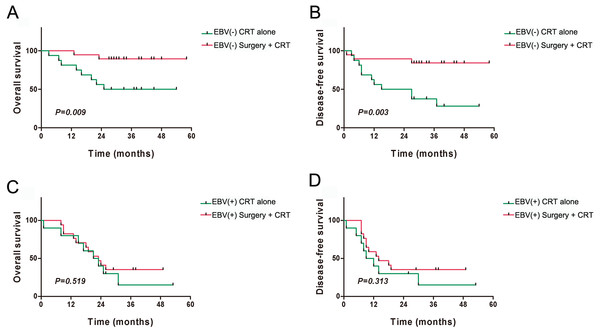 Kaplan–Meier analysis of clinical prognosis among the subgroups of patients with residual or recurrent nasopharyngeal carcinoma.