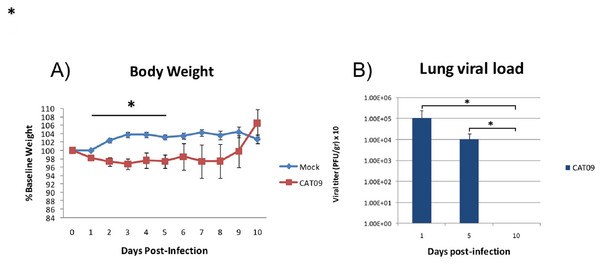 Changes in body weight and lung viral load induced by A (H1N1) pdm09 virus.
